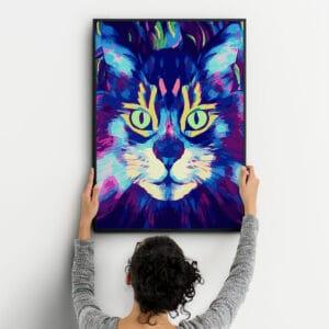 Czary kota